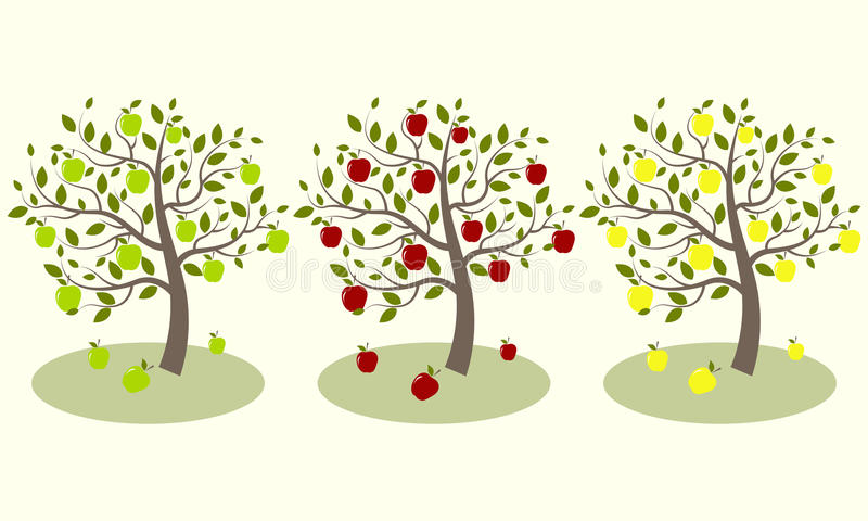 Árvore de maçã três ilustração do vetor