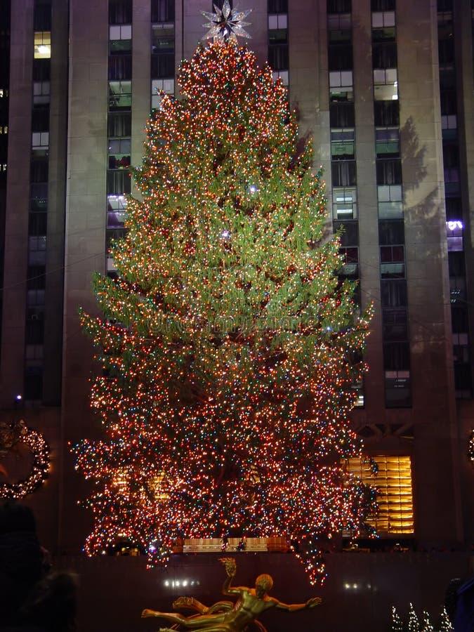 Download Árvore de Natal foto de stock. Imagem de feriado, brilhante - 541324
