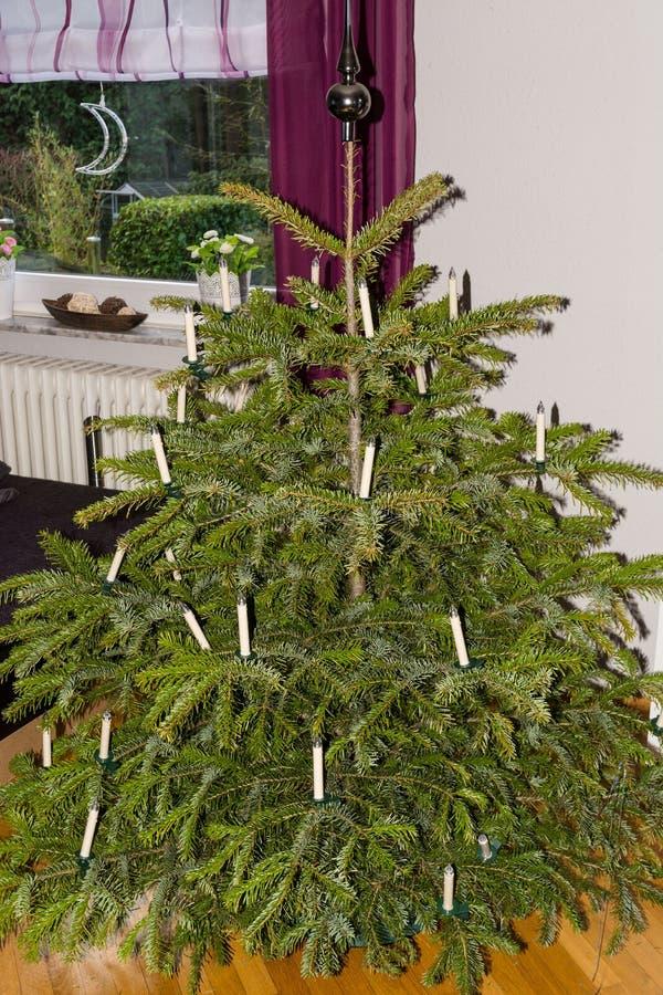 Árvore de Natal bonita imagem de stock royalty free