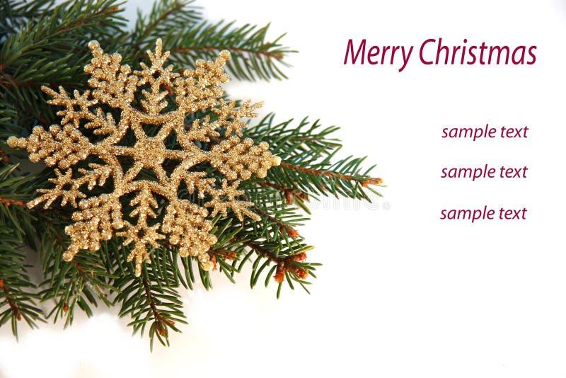 Árvore de Natal com flocos dourados foto de stock royalty free