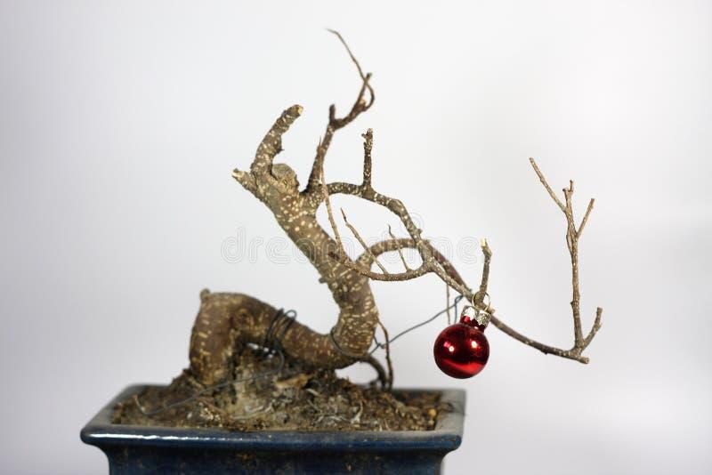 Download Árvore de Natal da crise imagem de stock. Imagem de deficiente - 10066875
