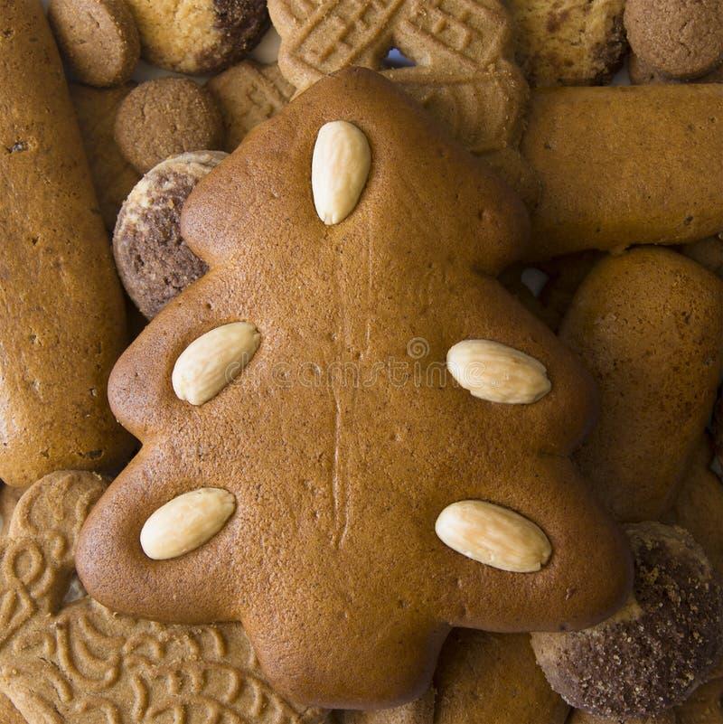 Árvore de Natal do pão-de-espécie e uma variedade de cookies do Natal fotografia de stock