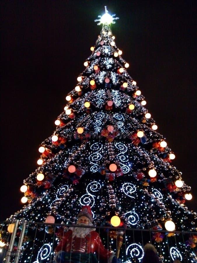 A árvore de Natal em Kharkov fotografia de stock royalty free