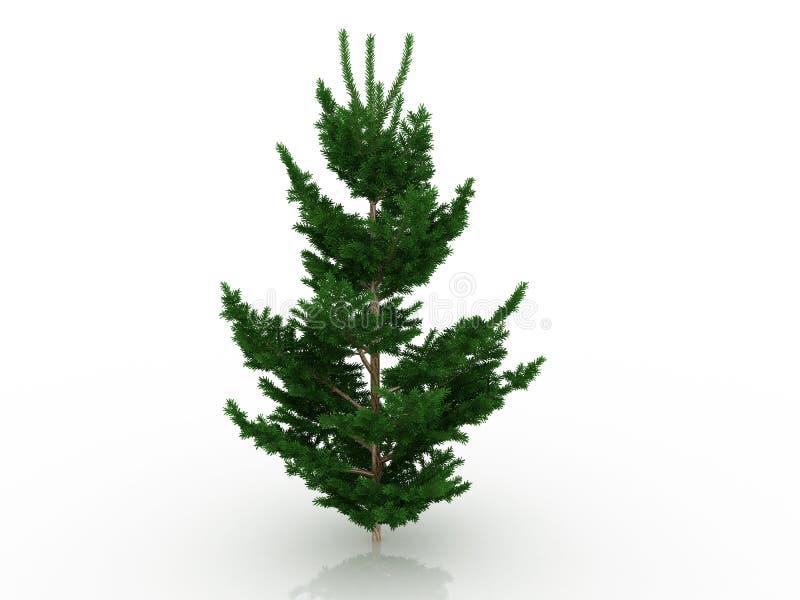 Árvore de Natal grande â8