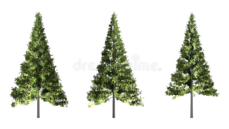 Árvore de Natal isolada no fundo branco com trajeto de grampeamento imagens de stock royalty free