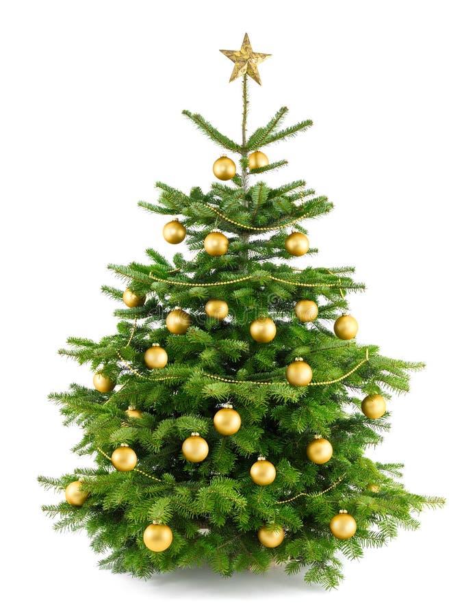 Árvore de Natal luxúria com ornamento do ouro fotos de stock royalty free