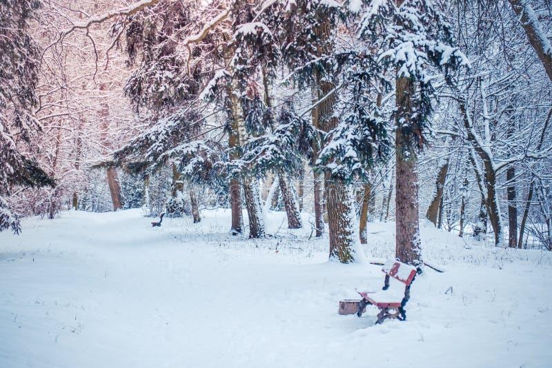 Árvore de Natal mágica da opinião da paisagem do conto de fadas fantástico fotografia de stock