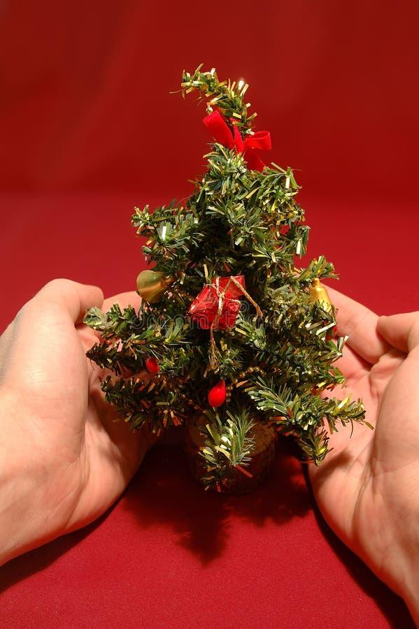 Download Árvore de Natal minúscula foto de stock. Imagem de mãos - 50408