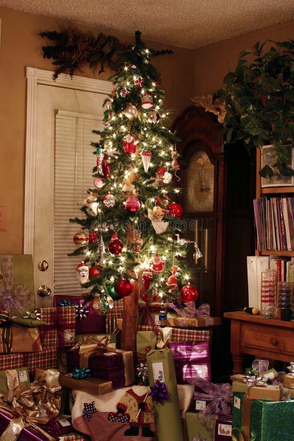 Árvore de Natal na noite foto de stock royalty free