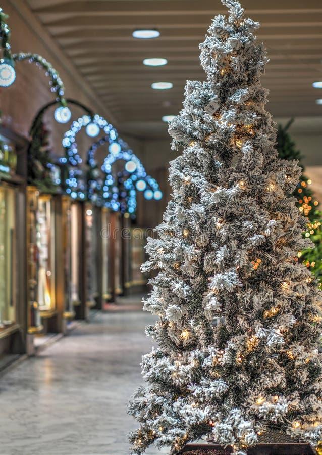 árvore de Natal Neve-espanada na rua só dos city's fotos de stock