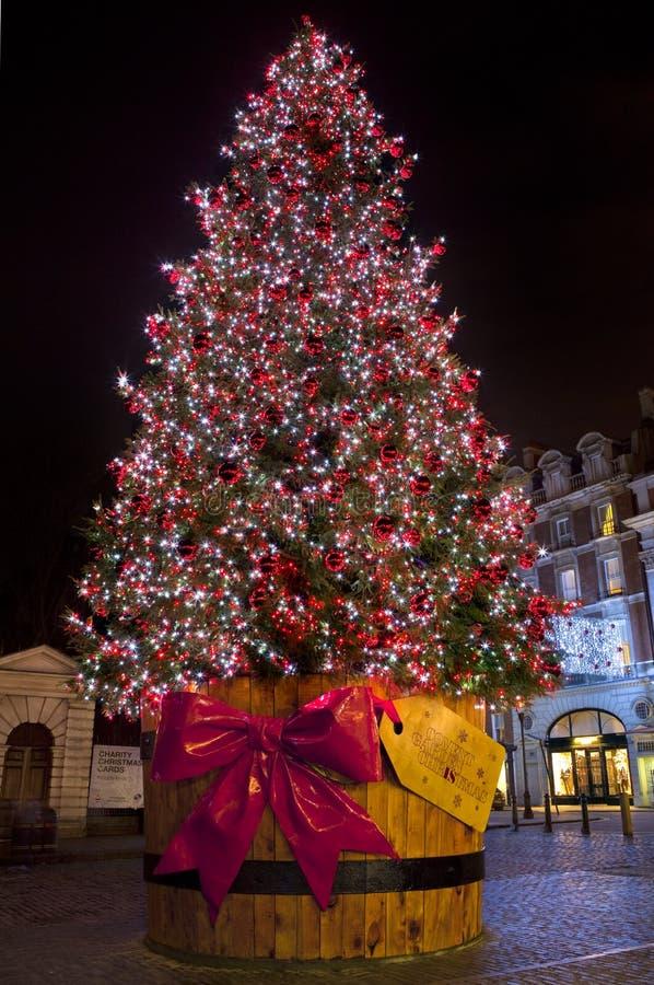 Árvore de Natal no jardim de Covent. imagens de stock royalty free