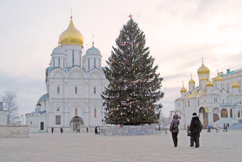 Árvore de Natal no Kremlin de Moscou Igrejas dos arcanjos e do aviso foto de stock