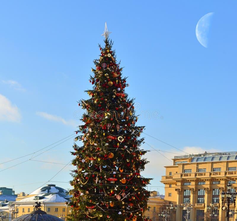 Árvore de Natal no quadrado de Manege imagens de stock
