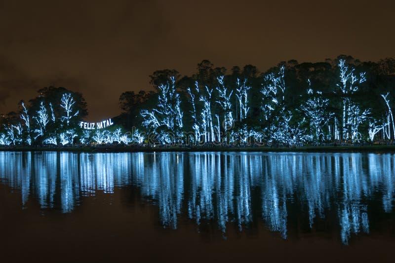 Árvore de Natal no Sao Paulo Brazil imagens de stock royalty free