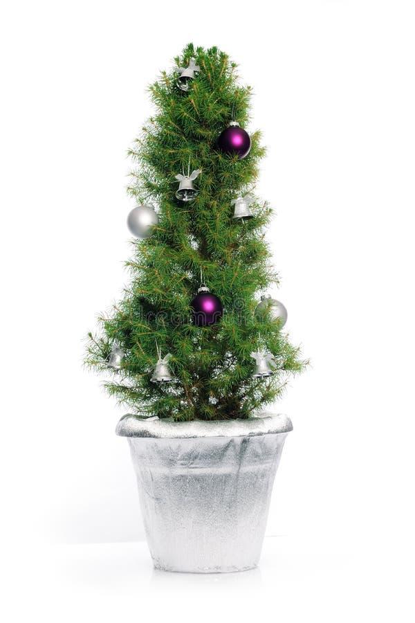 Árvore de Natal pequena fotografia de stock