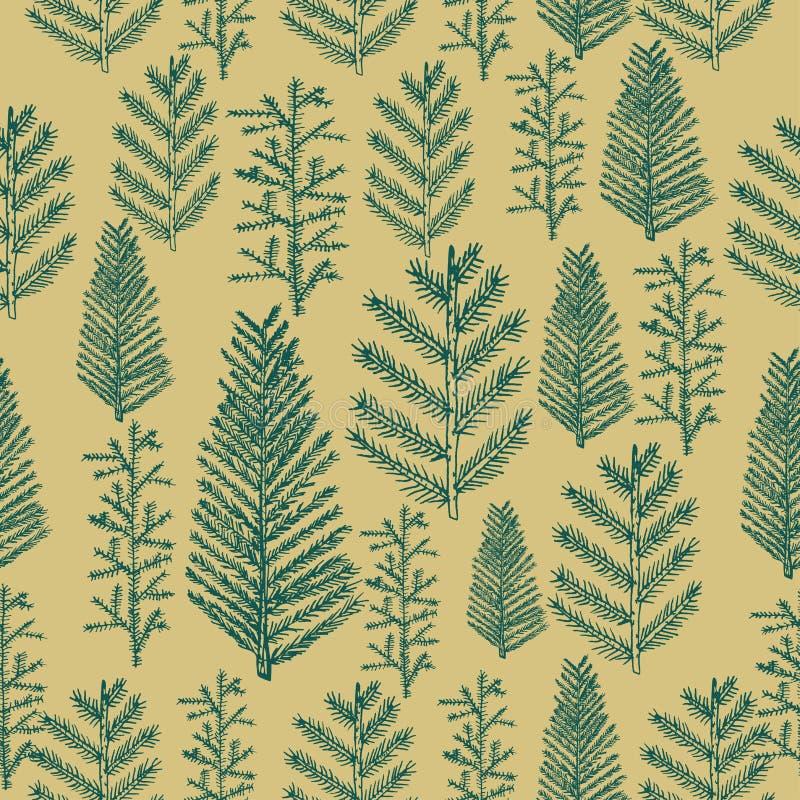 Árvore de Natal sem emenda do teste padrão no fundo do ouro ilustração do vetor