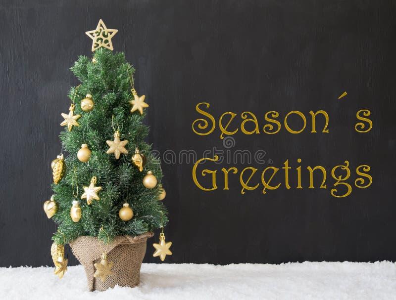 A árvore de Natal, texto tempera cumprimentos, concreto do preto fotos de stock royalty free