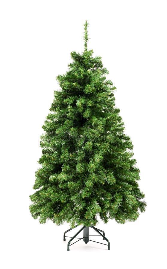 Árvore de Natal verde undecorated desencapada foto de stock royalty free