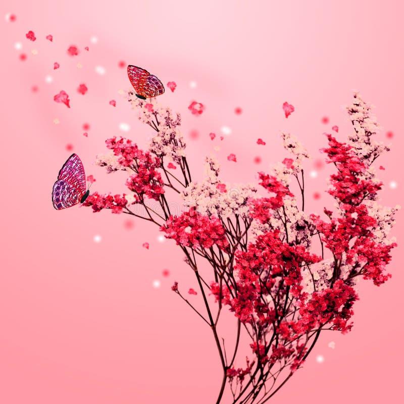 Árvore de Sakura com borboletas foto de stock royalty free