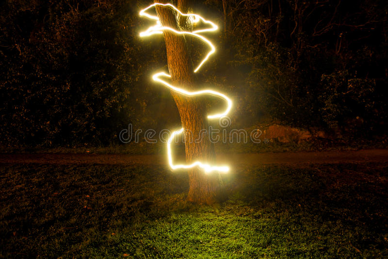 Árvore de vida fotografia de stock royalty free