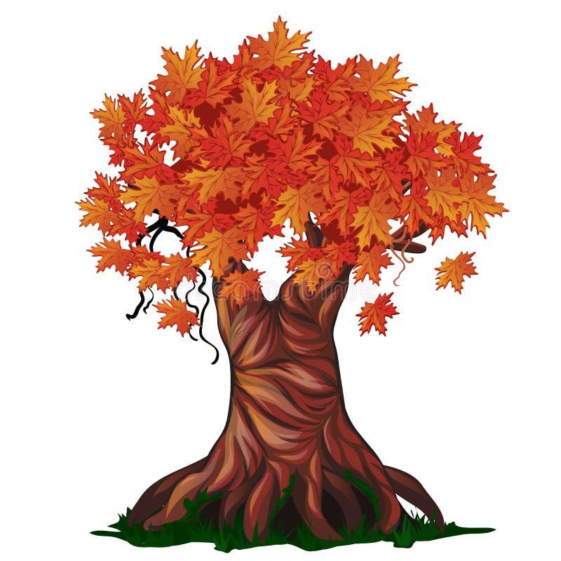 Árvore decíduo da fantasia na queda isolada no fundo branco outono dourado nos desenhos animados encantados do vetor da floresta ilustração stock