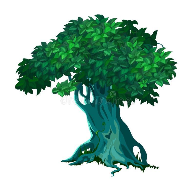 Árvore decíduo velha só isolada no fundo branco Ilustração do close-up dos desenhos animados do vetor ilustração stock