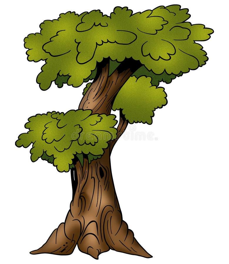 Árvore - Deciduous ilustração stock