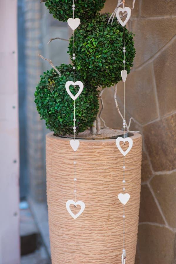 Árvore decorativa pequena artificial no escritório contra a parede imagem de stock
