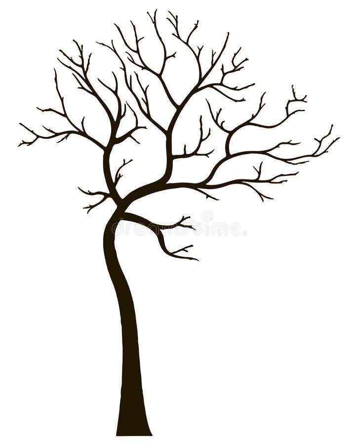 Árvore decorativa sem folhas ilustração royalty free