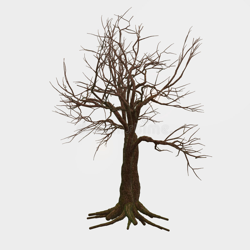 Árvore desencapada isolada ilustração royalty free