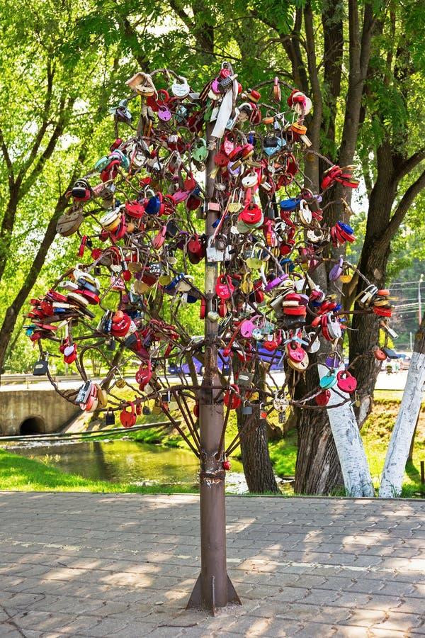 Árvore do amor com fechamentos do casamento foto de stock