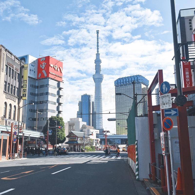 Árvore do céu de Tokyo foto de stock