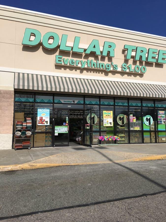 Árvore do dólar imagens de stock