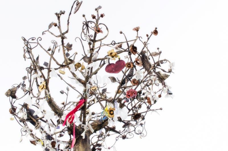 Árvore do desejo para amantes fotos de stock royalty free