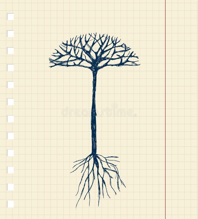 Árvore do esboço com raizes para seu projeto ilustração royalty free