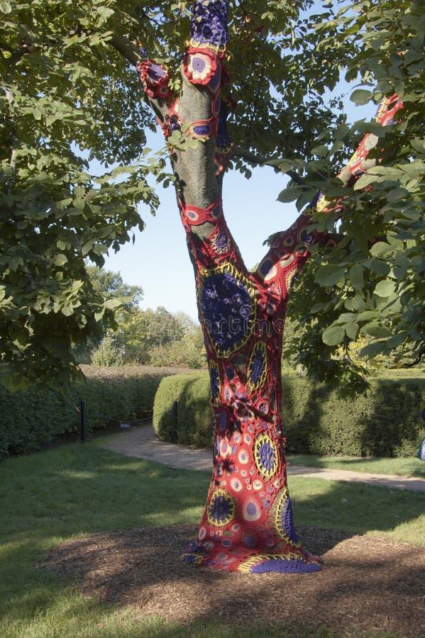 Árvore do líquene fotos de stock royalty free