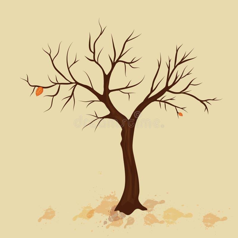 Árvore do outono com última folha ilustração stock
