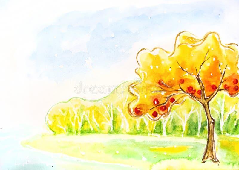 Árvore do outono. Pintura da aguarela. ilustração stock