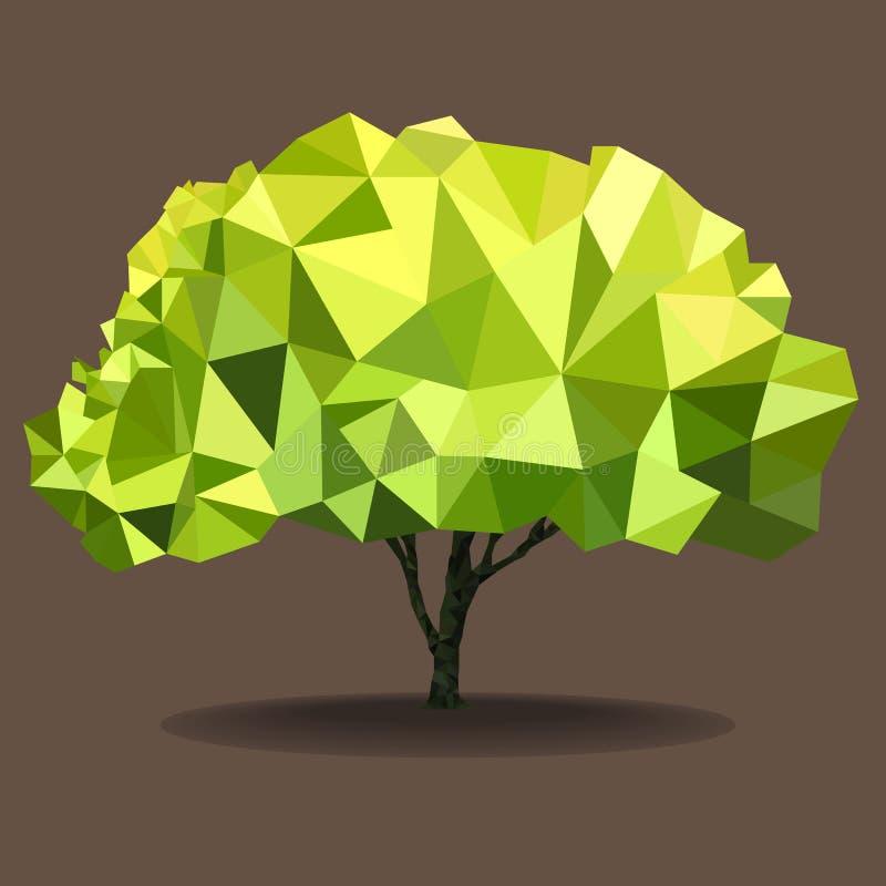 Árvore do polígono fotos de stock royalty free