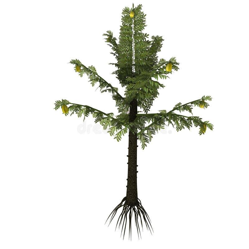 Árvore do serlii de Alethopteris ilustração do vetor