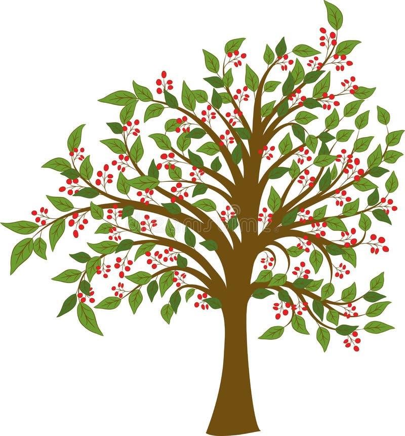 Árvore do verão, vetor ilustração royalty free