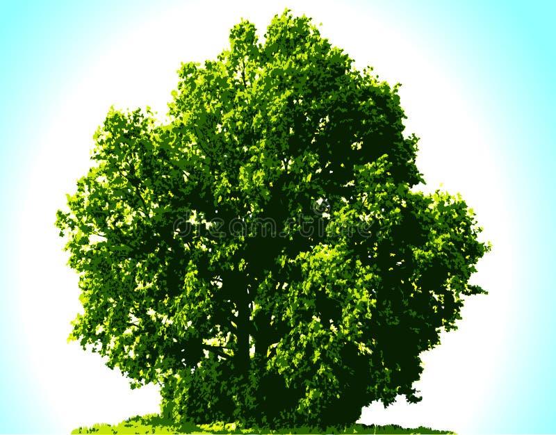 Árvore do vetor ilustração do vetor