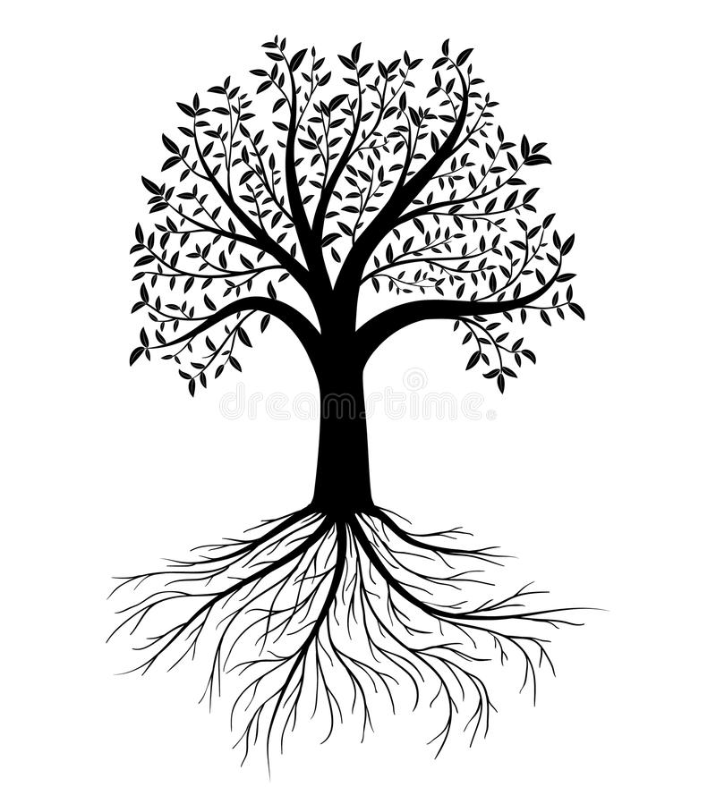 Árvore do vetor com folhas e raizes imagem de stock