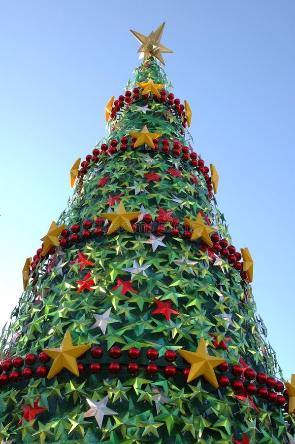 Árvore do Xmas (ii) imagens de stock royalty free