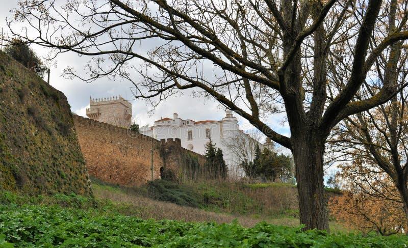 A árvore e as paredes do castelo no inverno imagens de stock royalty free