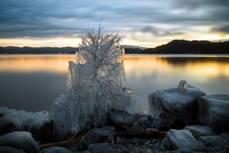Árvore e costa cobertas gelo do lago Jonsvatnet em Noruega imagens de stock