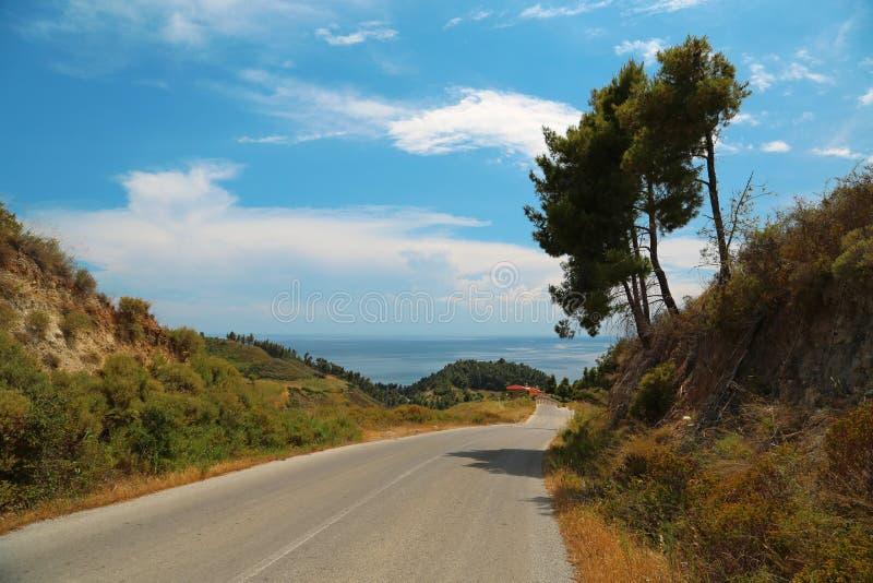 Árvore e estrada verdes em Grécia fotografia de stock