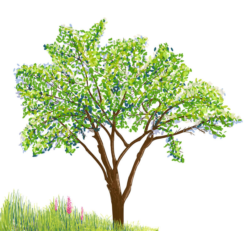 Árvore e grama com flores ilustração do vetor