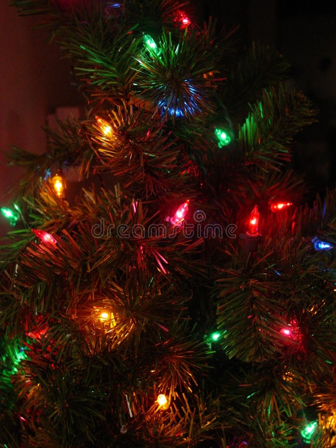 Árvore e luzes pequenas imagem de stock