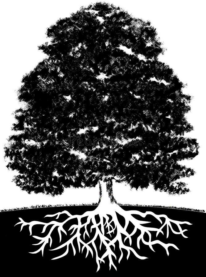 Árvore e raizes ilustração do vetor
